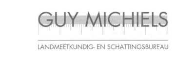 Guy Michiels Logo Insight